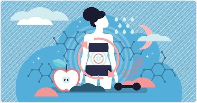 Bagaimana Sebenarnya Sistem Pencernaan yang Sehat Itu?